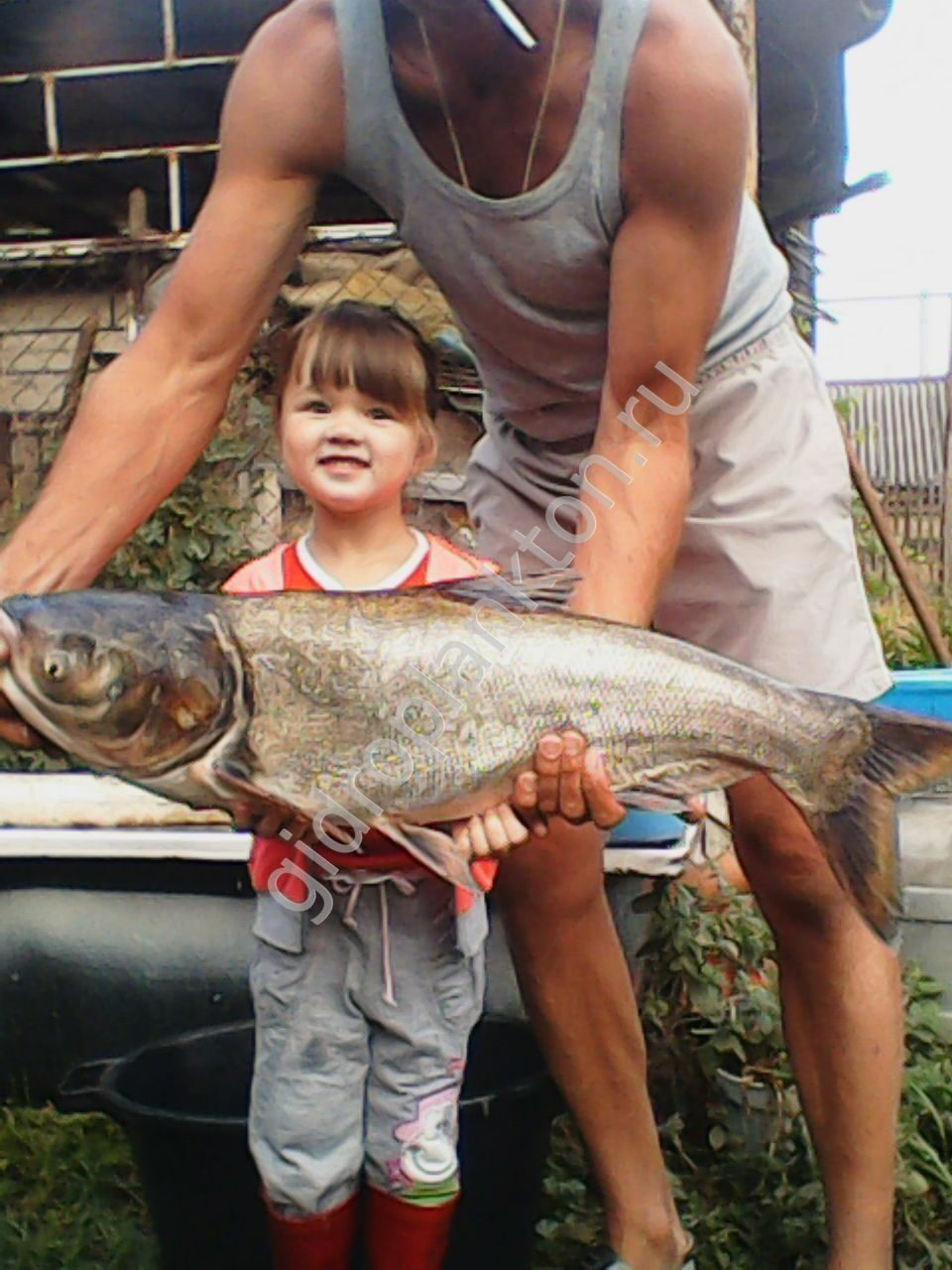 рыбалка fishhungry