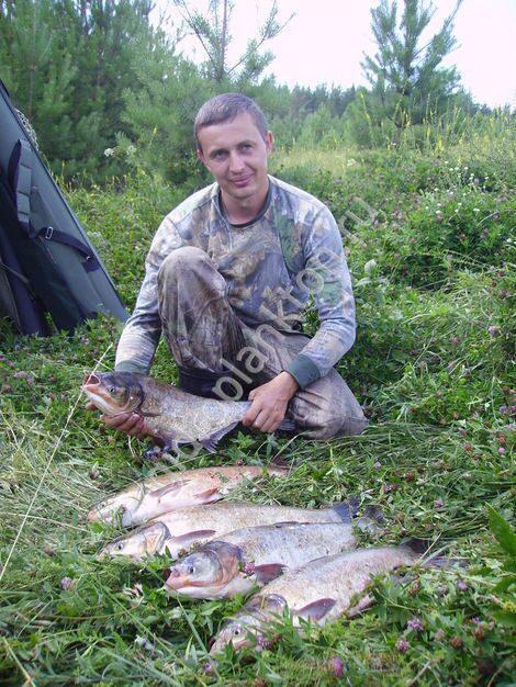 отзывы рыбаков о прикормке фиш хангри