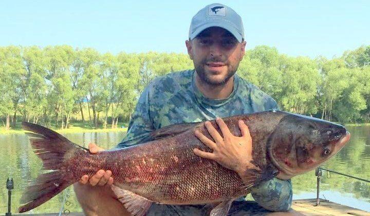 рыбалка наживка хитрости